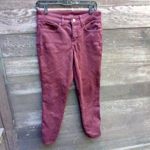 NYDJ Maroon Pant